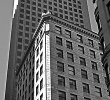 City of Boston Series...Lines, Curves and Shadows 84 State Street  by John  Kapusta