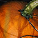 Natural Light On Pumpkin (Straight From Camera) by Jonice