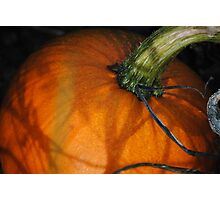 Natural Light On Pumpkin (Straight From Camera) Photographic Print