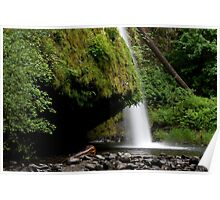 Drift Creek Falls in Oregon Poster