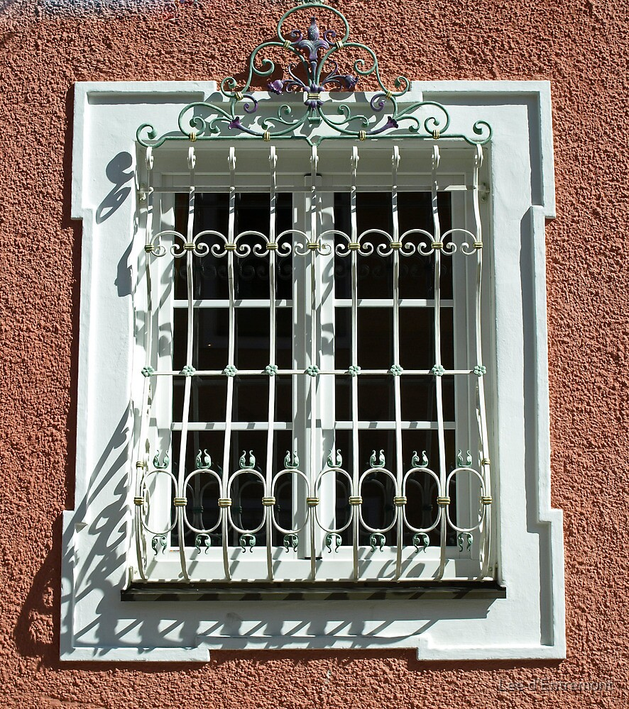 Wrought iron window. by Lee d'Entremont