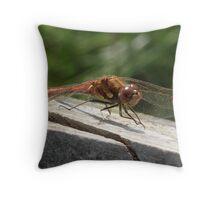 Common Darter Throw Pillow