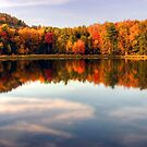 Autumn Shoreline Reflections by Gene Walls