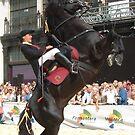 Menorcan Stallion 4 by Touchstone21