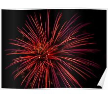 Colorful, Brilliant Fireworks! Poster