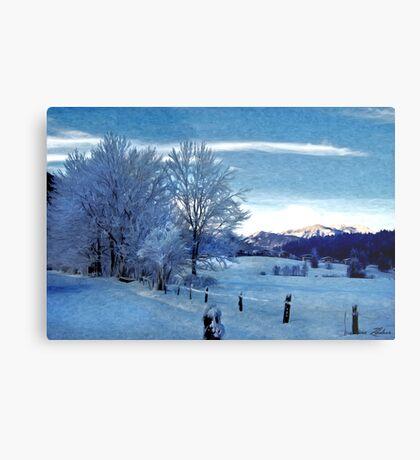 Winter Afternoon, Austria Metal Print