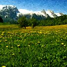 May in Austria by Sabine Zehetner