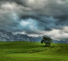 Summer Thunderstorm, Austria by Sabine Jacobs