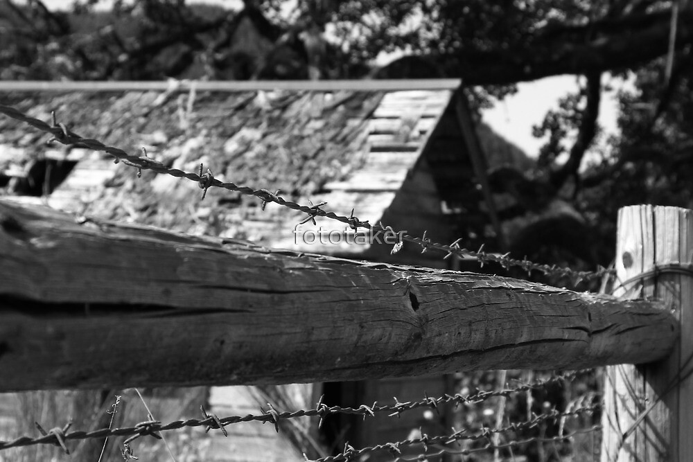 Barbed Entry by fototaker