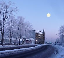Winter Moon by Bodil Kristine  Fagerthun