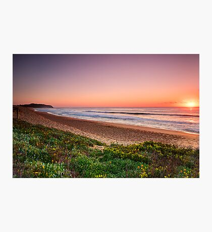 Narrabeen Beach, Sydney Australia. Photographic Print