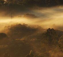 Silence by debsphotos