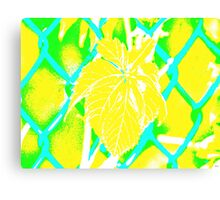 Tropical Chain Link Abstract Canvas Print