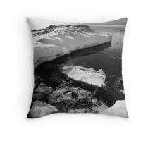 Lake Huron Winter I Throw Pillow