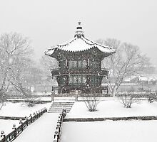 Ice Cold Palace In Seoul by Christian Eccleston