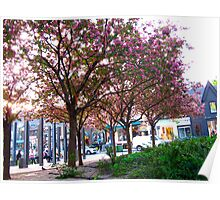Pink-lined streets Poster