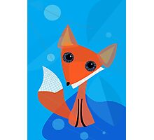 Abstract Fox Photographic Print