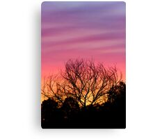 Sihouetted by the Sunset Sky Canvas Print