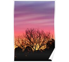 Sihouetted by the Sunset Sky Poster