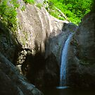 Water Fall by Timothy L. Gernert