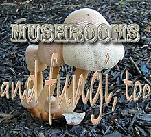Calendar - Mushrooms and Fungi, Too by MotherNature