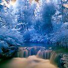 Kerosine Creek by Paul Mercer