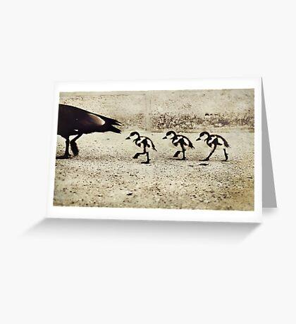 Three Little Ducks Greeting Card
