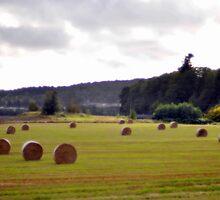 Dream Landscape - Harvested Fields by HELUA