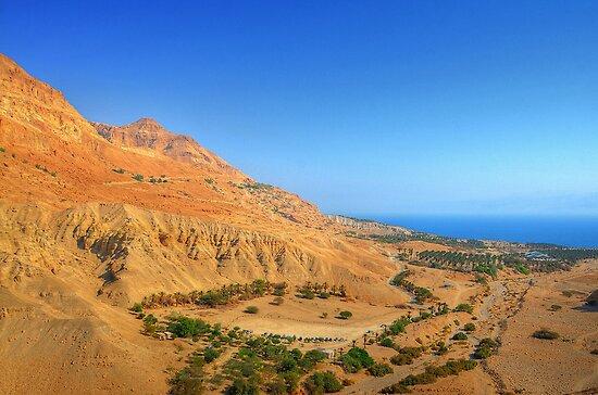 Dead Sea - Ein Gedi by barlevitay