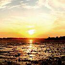 Sunset Shores by Gavin King