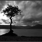 Millarochy Bay, Loch Lomond by Andrew Watson