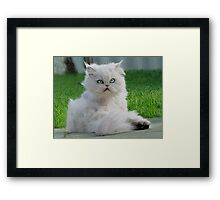 """""""Princess Kendra""""  Pout is like this HUH? Framed Print"""