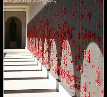 we shall remember them by hayleyleonardi