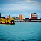 20101211 - Ferry by artz-one