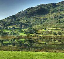 Little Langdale Tarn by Jamie  Green