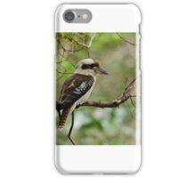 Kookaburra and dinner iPhone Case/Skin