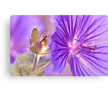 Before and After Canvas Print