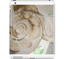 Piece of History iPad Case/Skin