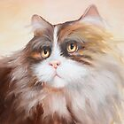 Persian Cat by IlonaT
