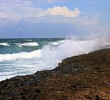 Aruba the Windward Side  by John  Kapusta