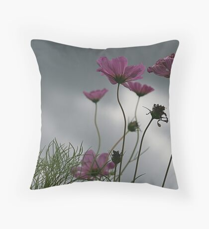 Somewhere in the Cosmos Throw Pillow