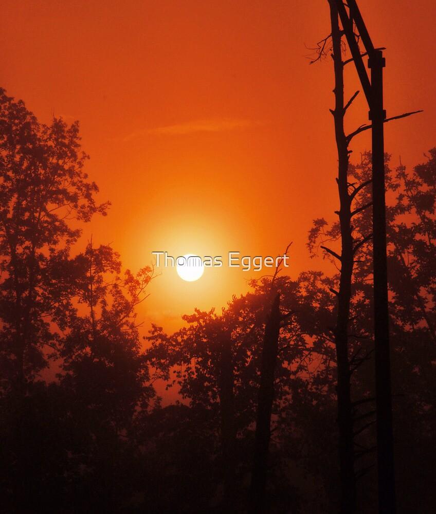 Nuova luce dell'alba by Thomas Eggert