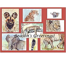 Season's Greetings from Africa Photographic Print