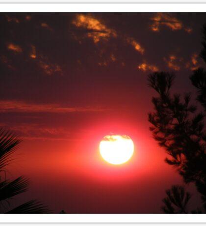 Wildfire Sunset...... Sticker