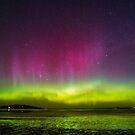 Aurora Australis goes wild! by Odille Esmonde-Morgan