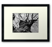Textured Growth Framed Print