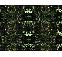 En Emerald Kaleidoscope Photographic Print
