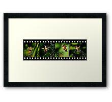 FILM Framed Print