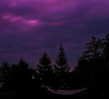 Night Hammock by Dennis Pal