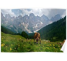 Paneveggio in the Dolomites Poster